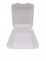 Menübox m. anhäng. Deckel biologisch abbaubar ungeteilt 19x21 cm Bagasse weiß